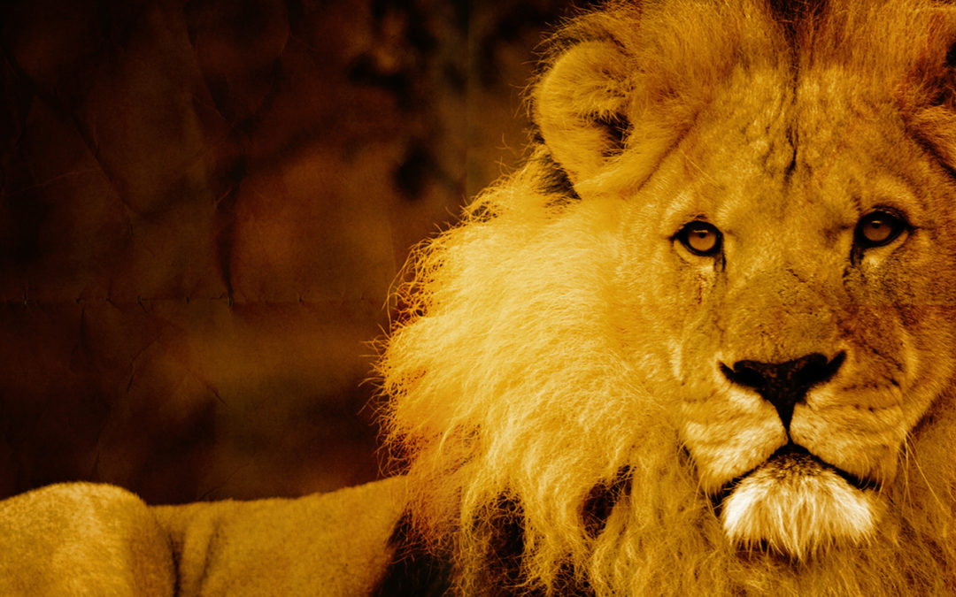16 Apps Every Leader Needs To Be A Beast